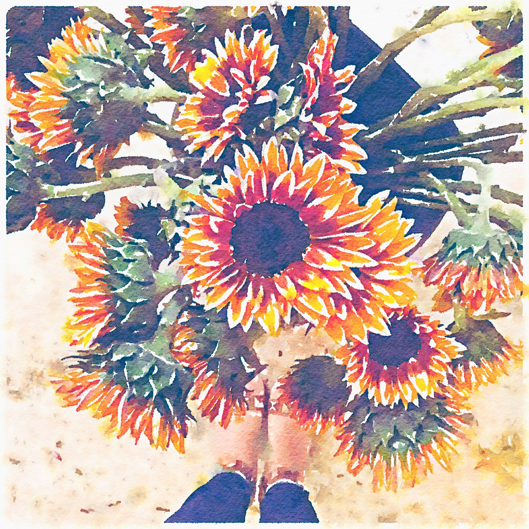 Keira Lennox Firewalker Sunflowers Painted in Waterlogue