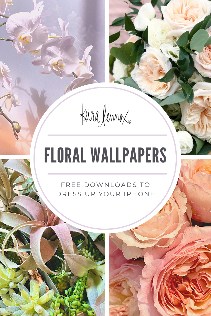 Free floral iphone wallpapers